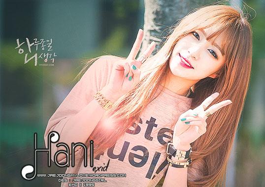 hani-exid